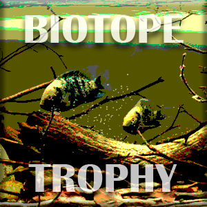 Biotope-trophy