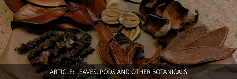 leaves-EN