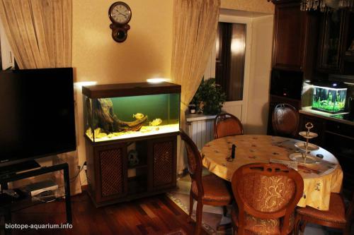 029_biotope-aquarium_sa-4-4